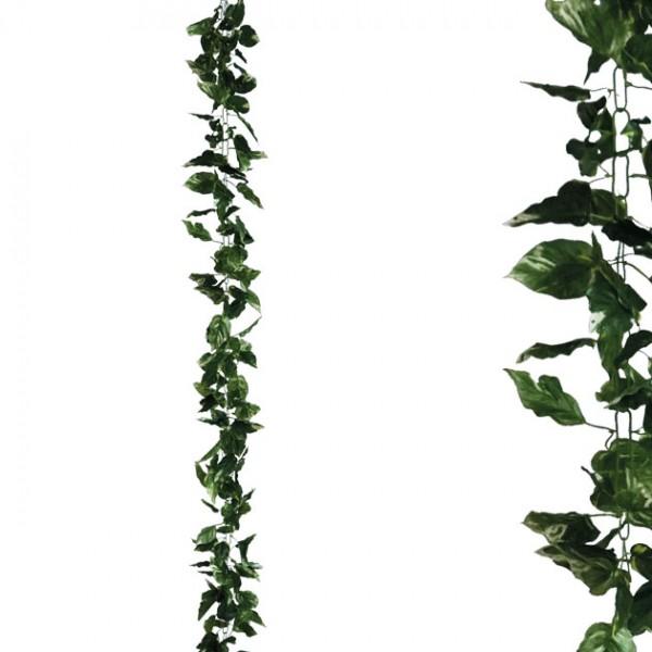 ΓΙΡΛΑΝΤΑ ΠΟΘΟΣ ΔΙΧΡΩΜΟΣ ΑΛΥΣΙΔΑ Y270cm 1/96ΚΙΒ