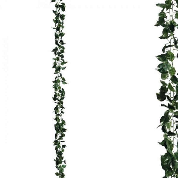 ΓΙΡΛΑΝΤΑ ΚΙΣΣΟΣ ΠΡΑΣΙΝΟ ΑΛΥΣΙΔΑ Υ270cm 1/120ΚΙΒ